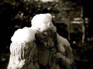 昨日は雪かき!?