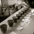 """Cupping ! • <a style=""""font-size:0.8em;"""" href=""""http://www.flickr.com/photos/37169974@N03/3433368692/"""" target=""""_blank"""">View on Flickr</a>"""