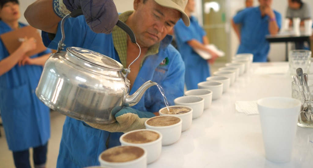 コーヒー豆 素材調達の旅 ホンジュラス編 ③