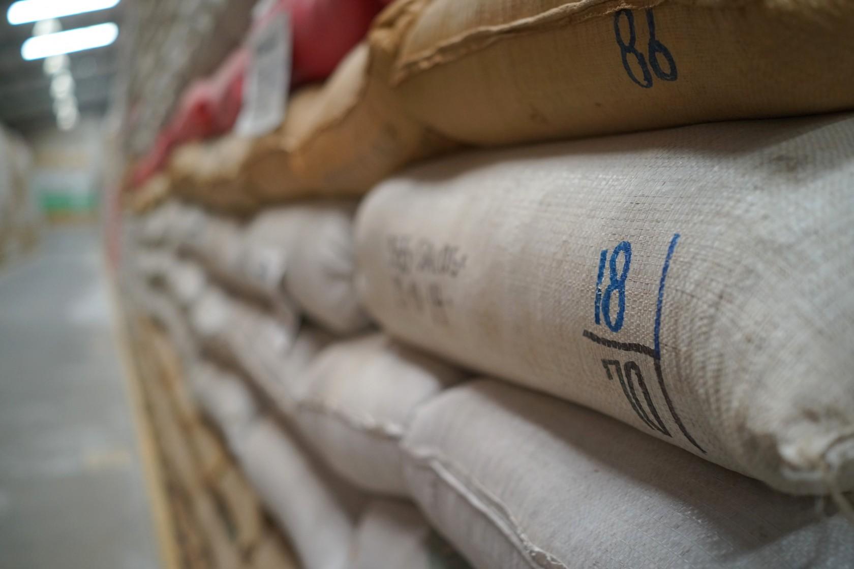 コーヒー豆 素材調達の旅 グアテマラ編 ②
