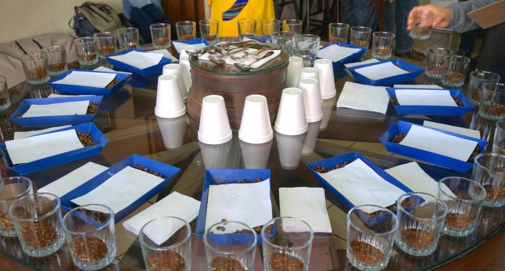 コーヒー豆 素材調達の旅 グアテマラ編 ⑦