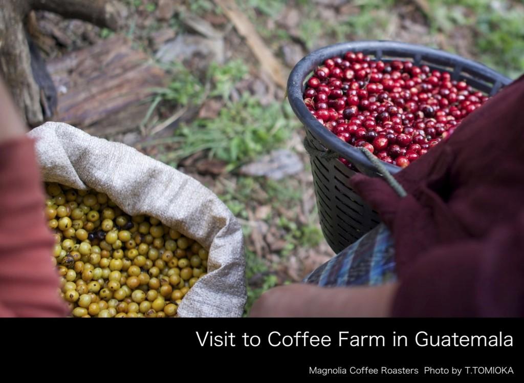 Guatemala2014_フォトブックjpeg