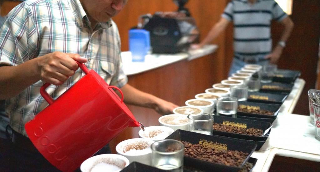 スペシャルティコーヒーの生産国へ ② エルサルバドル編