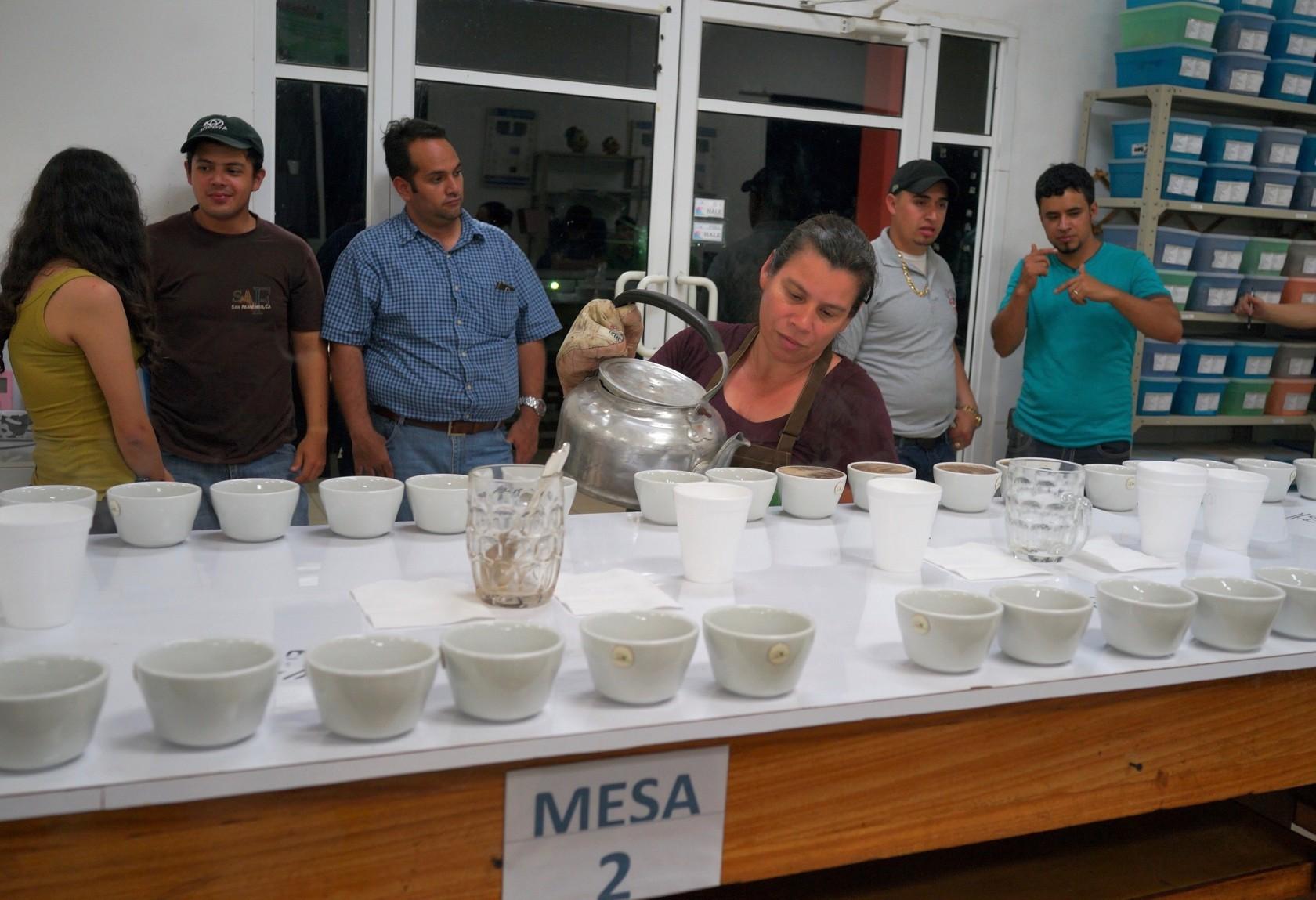 スペシャルティコーヒー素材買付の旅2016 ホンジュラス