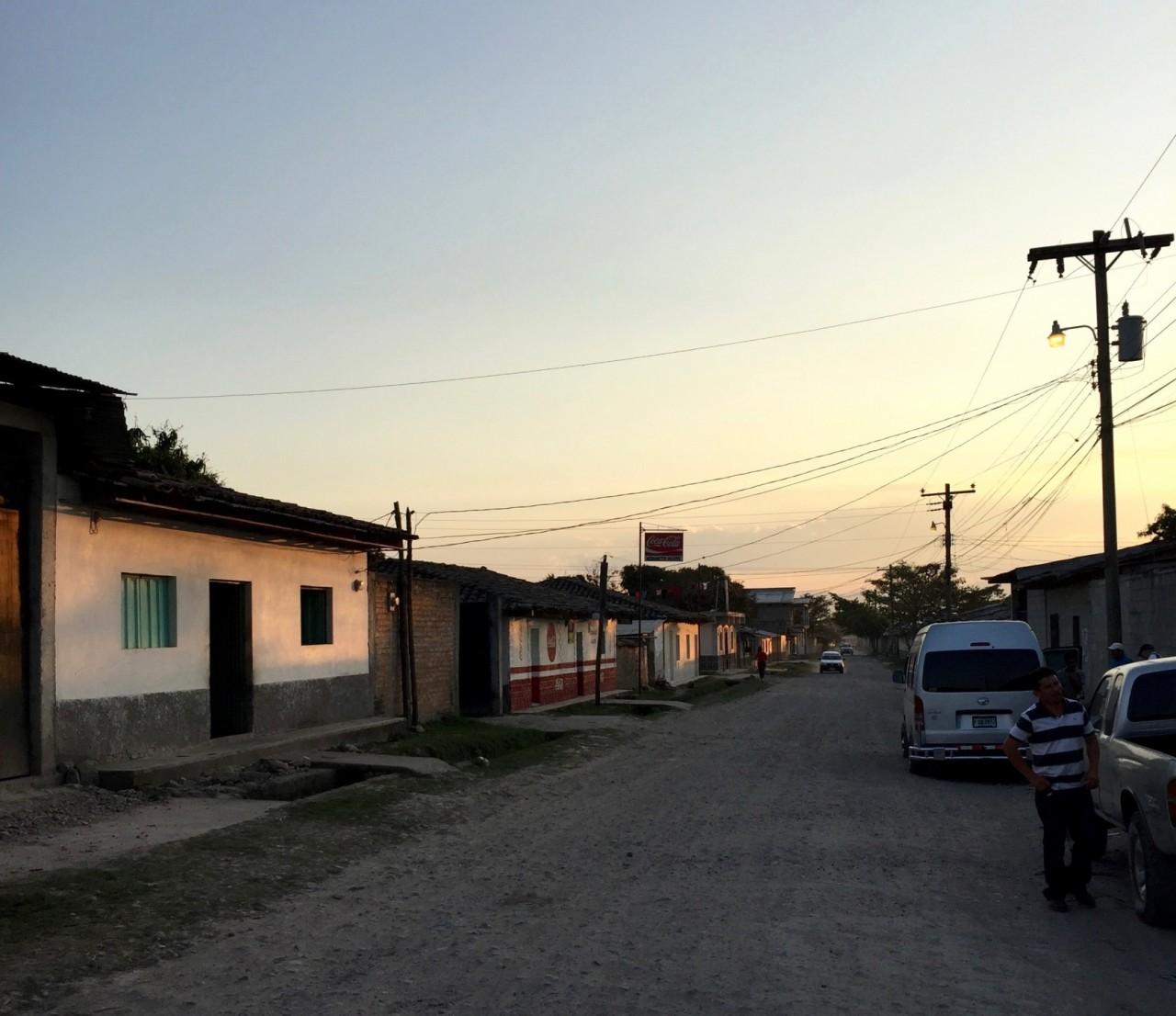 HONDURAS Aguacate COE
